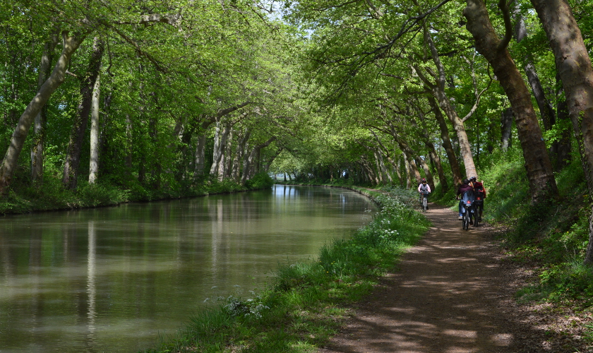 Promenade le long du Canal du Midi